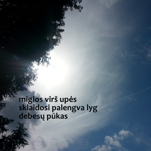 Pūkuotas haiku