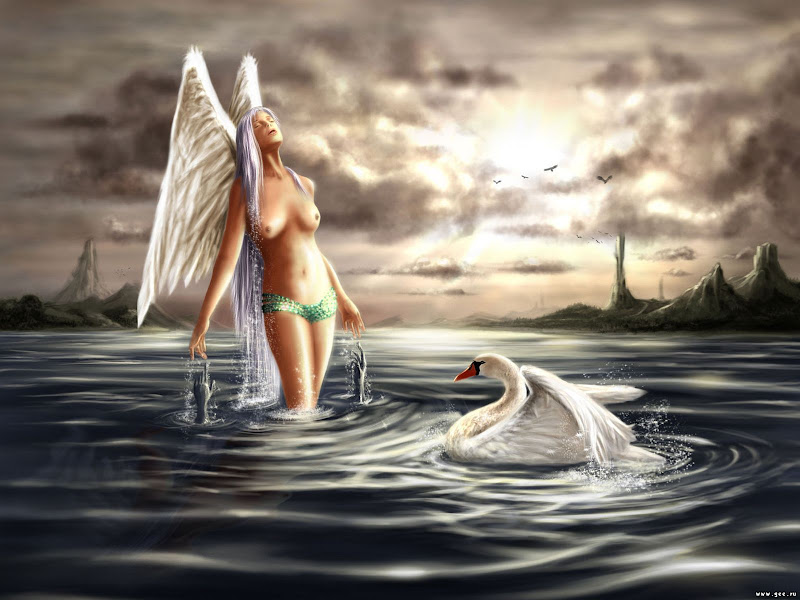 Angel And Swan, Angels 3