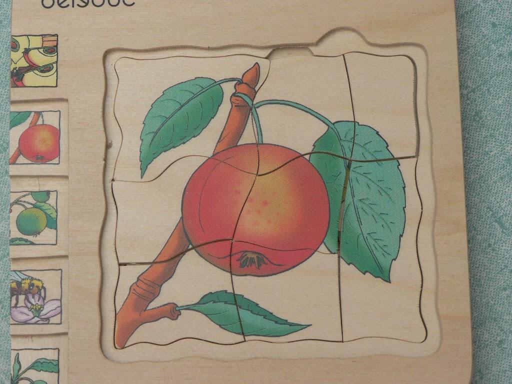 De Kleuters maken zelf een fruit- en groentewinkel. - P1260569.JPG