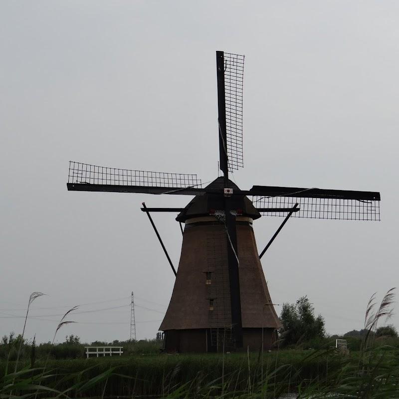 Day_6_Kinderdijk_30.JPG