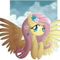 Fluttershy The Robot contact information
