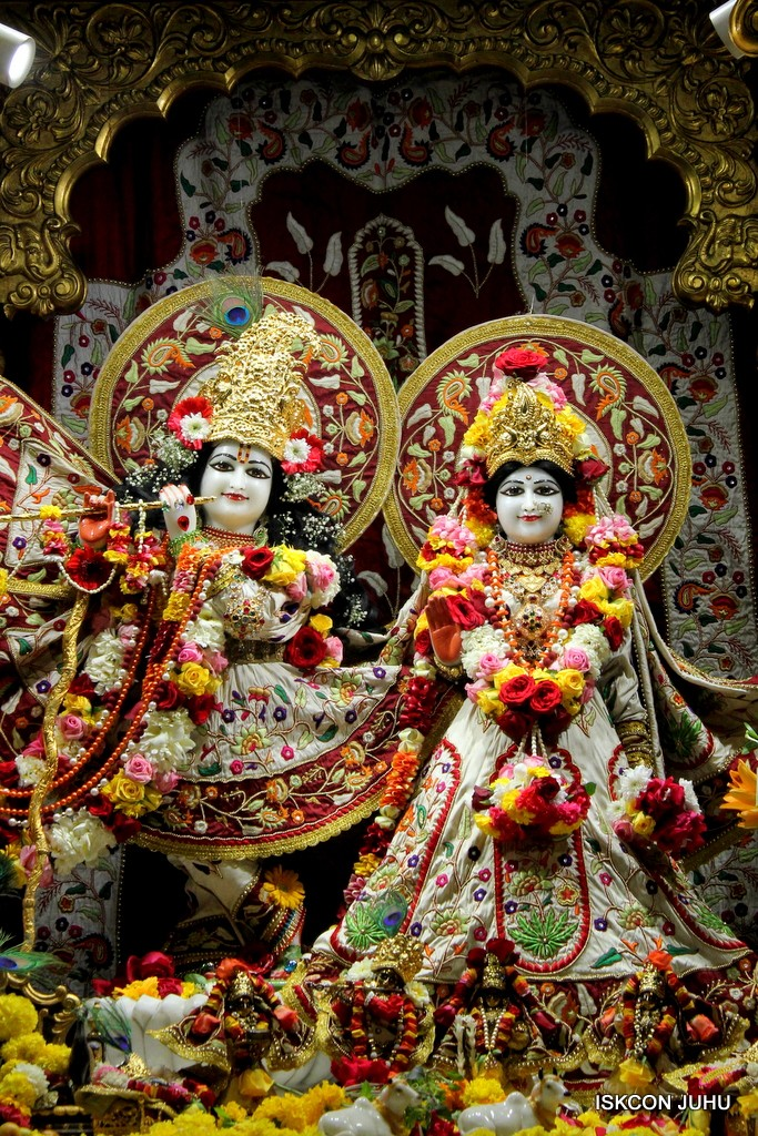 ISKCON Juhu Sringar Deity Darshan on 2nd Jan 2017 (2)