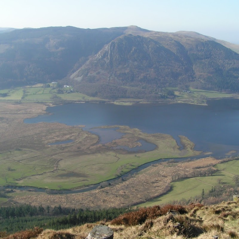 Lake_District_02 Bassenthwaite Lake from Dodd Hill.jpg
