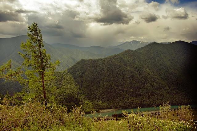 La Katun et les montagnes de l'Altaï, juillet 2008. Photo : Psamtik