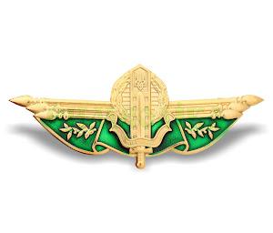 Нагрудний знак Державна прикордонна служба офіцерська  (Ф)