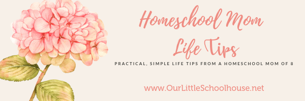 Homeschool Mom Life Tips