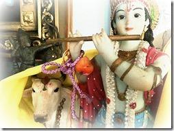 Krishna_cover2.jpg3
