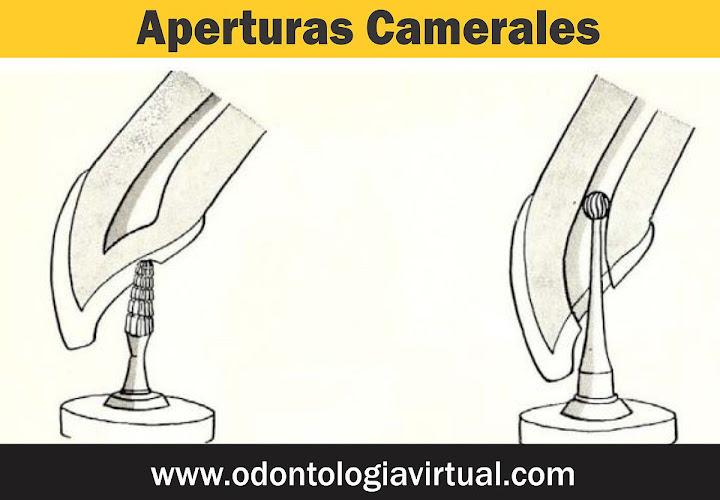 apertura-cameral