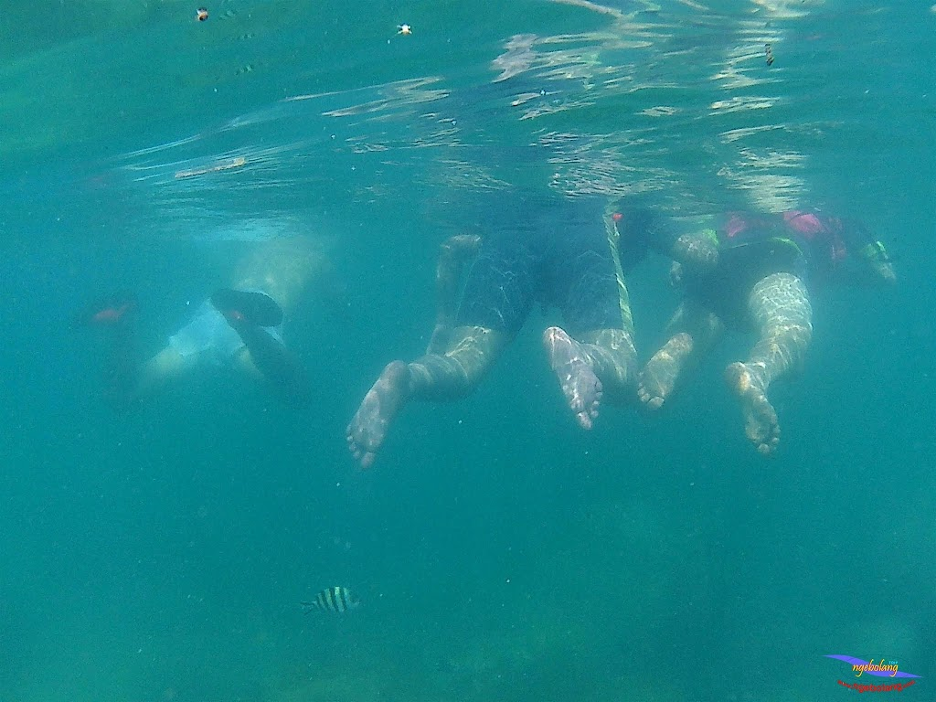 family trip pulau pari 140716 GoPro 21