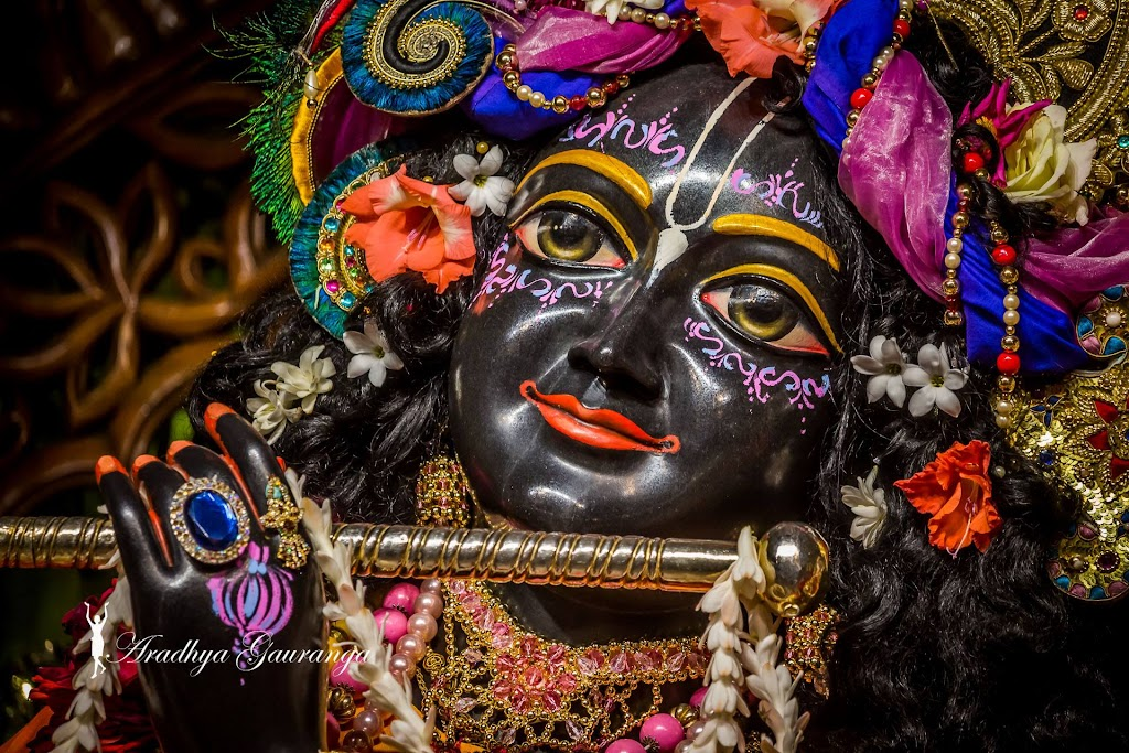 ISKCON Mayapur Deity Darshan 20 Jan 2017 (8)