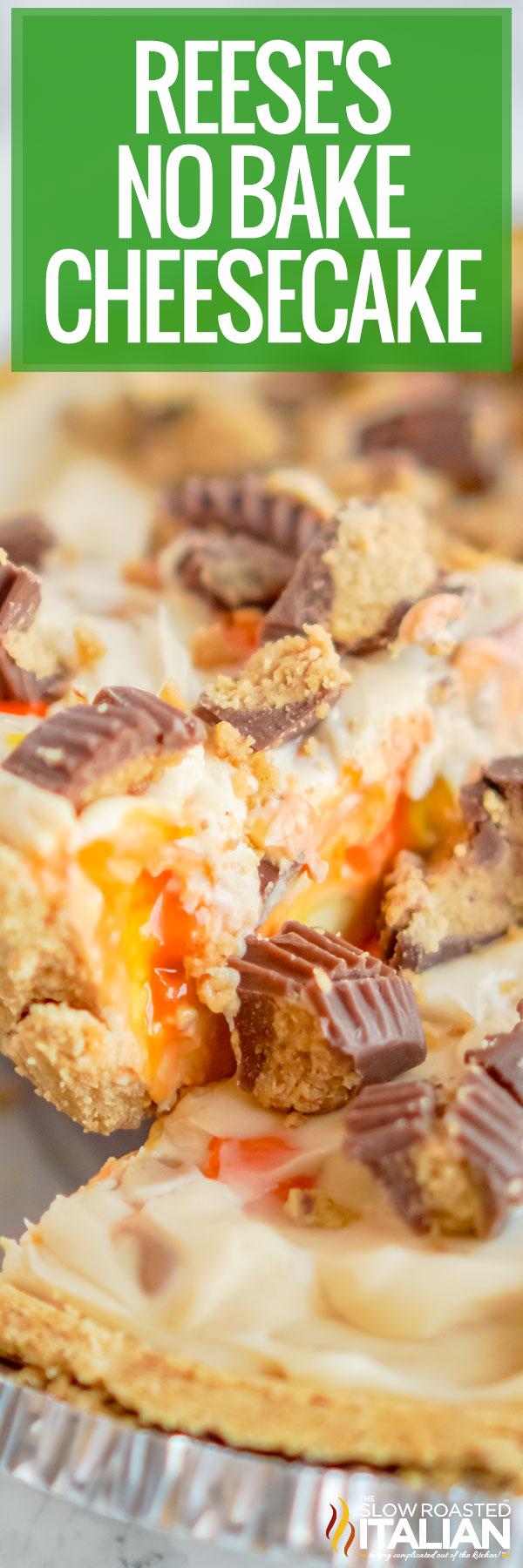 Reese's No Bake Cheesecake close up