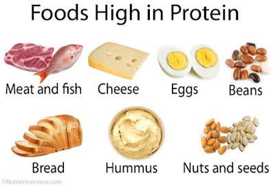 makanan mengandungi protein