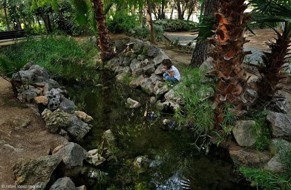 Parc de la Ciutat. Solar de l'antic càmping Salou. Salou, Tarragonès, Tarragona