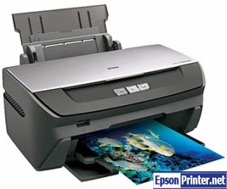 Reset Epson R270 printing device by program