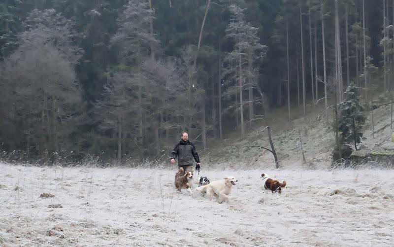 20140101 Neujahrsspaziergang im Waldnaabtal - DSC_9831.JPG