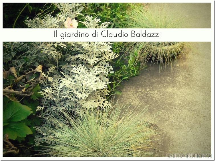 Il giardino di Claudio (14)