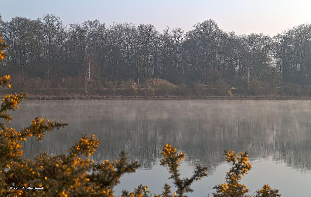 au lever du soleil Etang01_HDR4