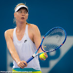 Maria Sharapova - 2016 Brisbane International -DSC_2069.jpg