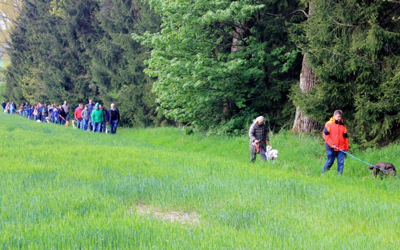 17. Mai 2016: On Tour in Pechbrunn - Pechbrunn%2B%252810%2529.jpg