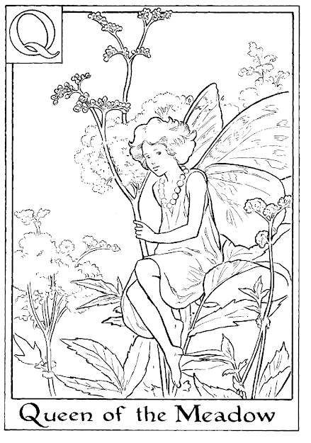 Letter For Queen Of The Meadow Flower Fairy Coloring Page Alphabet  Flower Fairies Flower Coloring Pages Queen Coloring Pages Free Online  Coloring