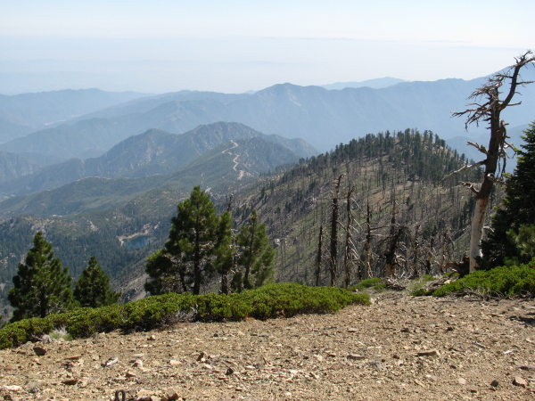 Islip ridge heading on down to the edge of Crystal lake