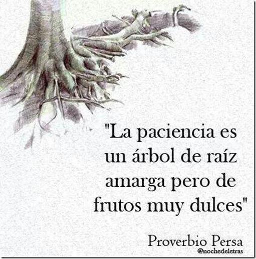 proverbio-paciencia