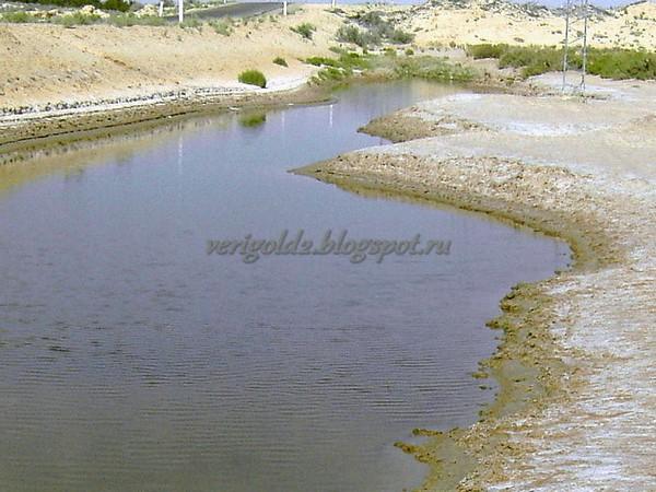 Соляное болото Туниса