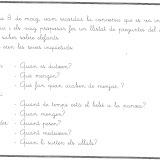 ELEFANTS PROJECTE (9).jpg
