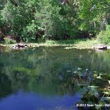 04-04-12 Hillsborough River State Park - IMGP9685.JPG