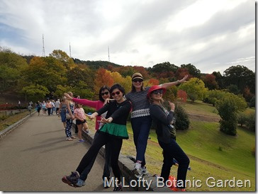 A beautiful day at Mt Lofty Botanical  Garden