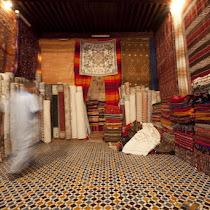 Morocco Portfolio