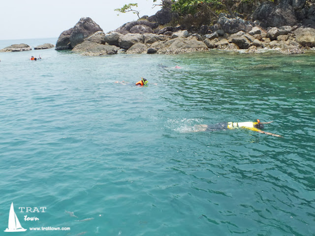 เกาะยักษ์เล็ก ดำน้ำชมปะการัง กับ โฮมสเตย์ บีช ป้านา เกาะช้าง บางเบ้า