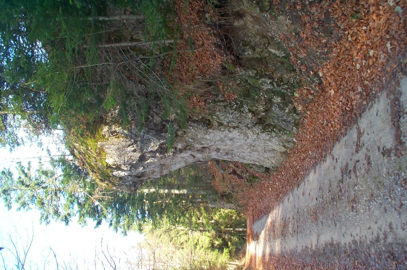 Jesenovanje, Črni dol 2004 - Jesenovanje%2B2004%2B050.jpg