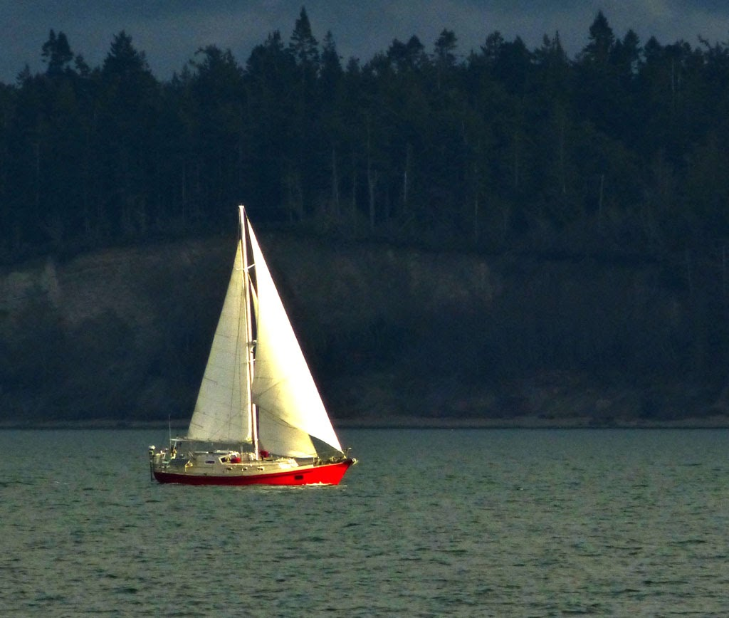 """Sailing into the Light"" by Robin Prentice -- 1st Place B Special"