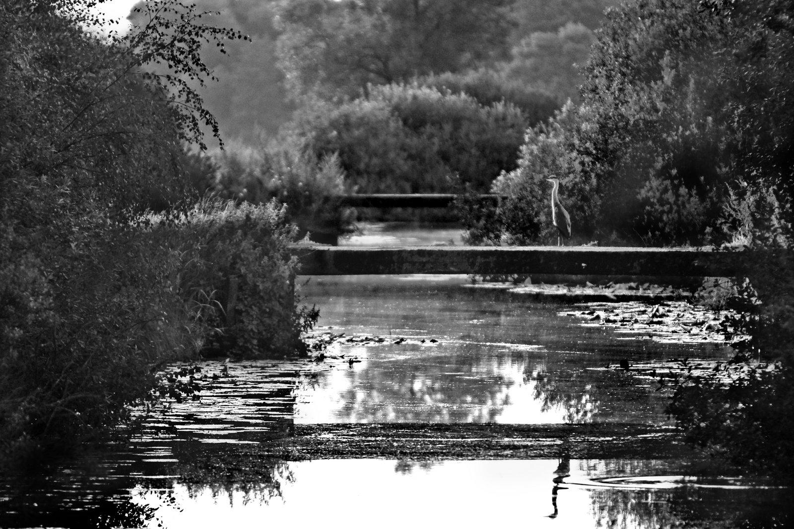200807StJuergen 053.jpg
