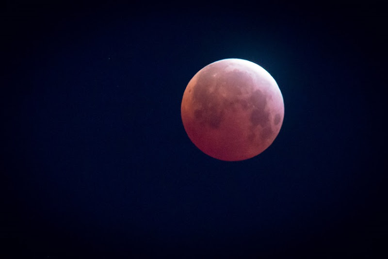 Lunar Eclipse IMG_1408