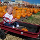 Pumpkin Patch - 115_8255.JPG