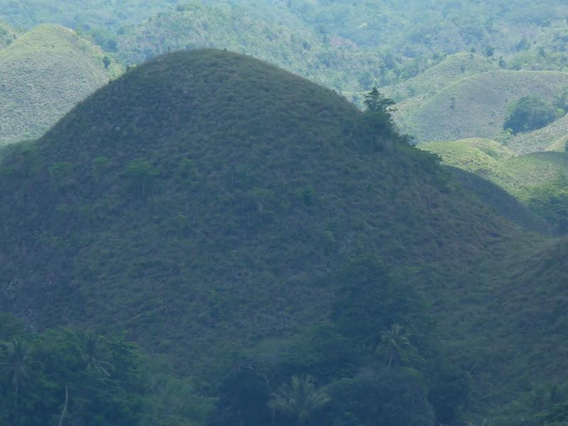 Bohol et Panglao - philippines1%2B1369.JPG