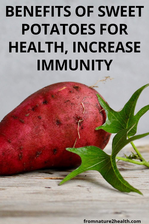 Benefits of Sweet Potatoes For Health, Increase Immunity
