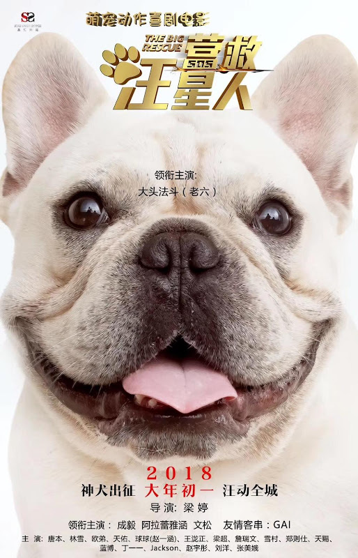 The Big Rescue China Movie