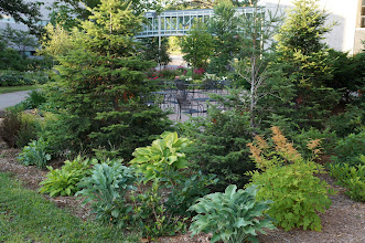 Photo: I started Saturday morning with a walking tour of the MTU campus. There are lots of beautiful garden spots on campus.