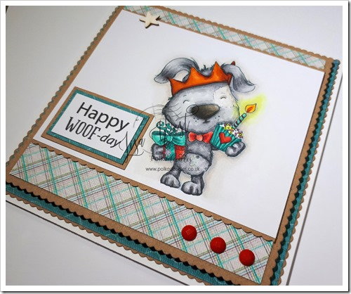 Scruff Birthday (1)