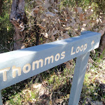 Thommos Loop track sign (53219)