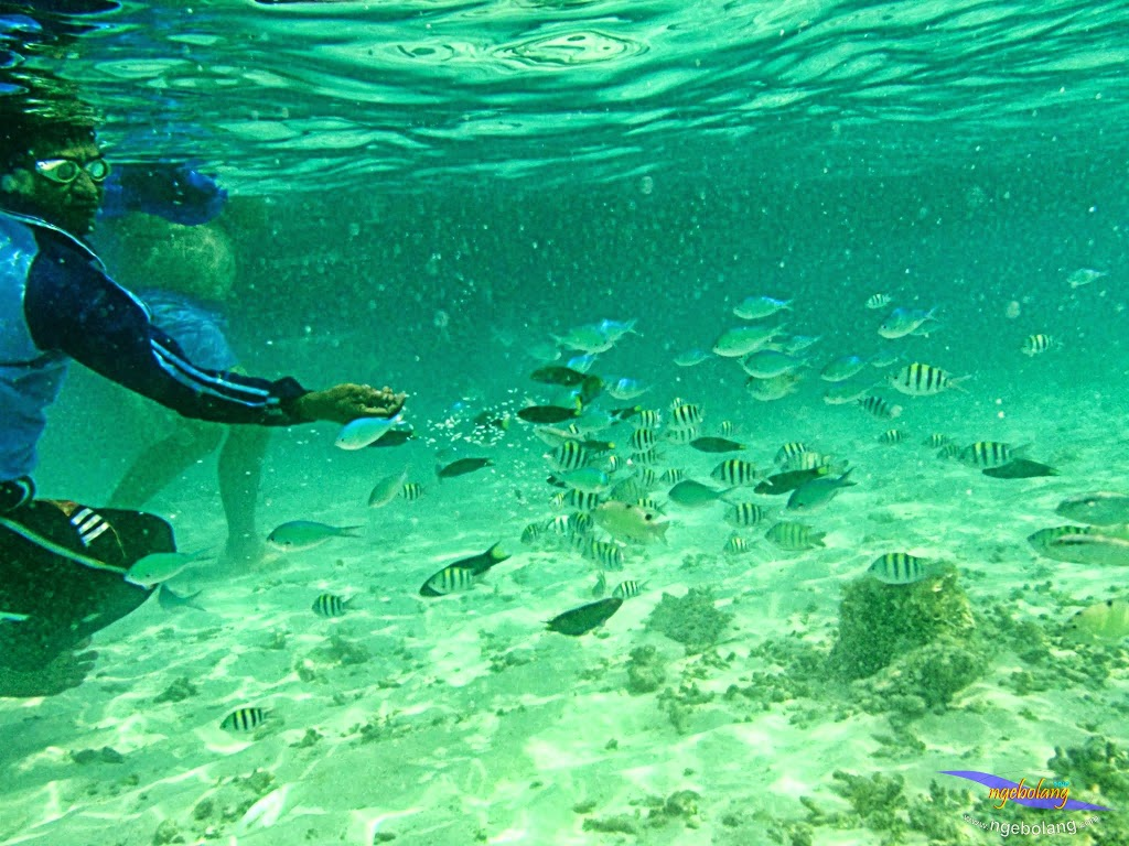 ngebolang-trip-pulau-harapan-olym-7-8-09-2013-04