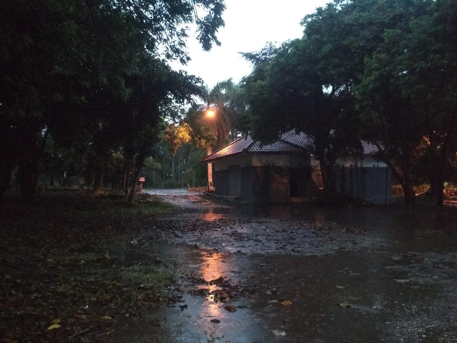 Hujan, Ada Dua Pilihan #69