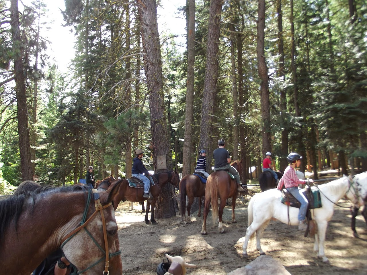 Camp Baldwin 2014 - DSCF3673.JPG