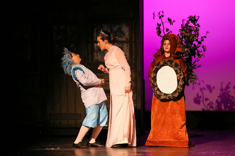2014Snow White - 18-2014%2BShowstoppers%2BSnow%2BWhite-5739.jpg