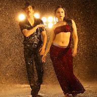 Bengal Tiger Movie Stills