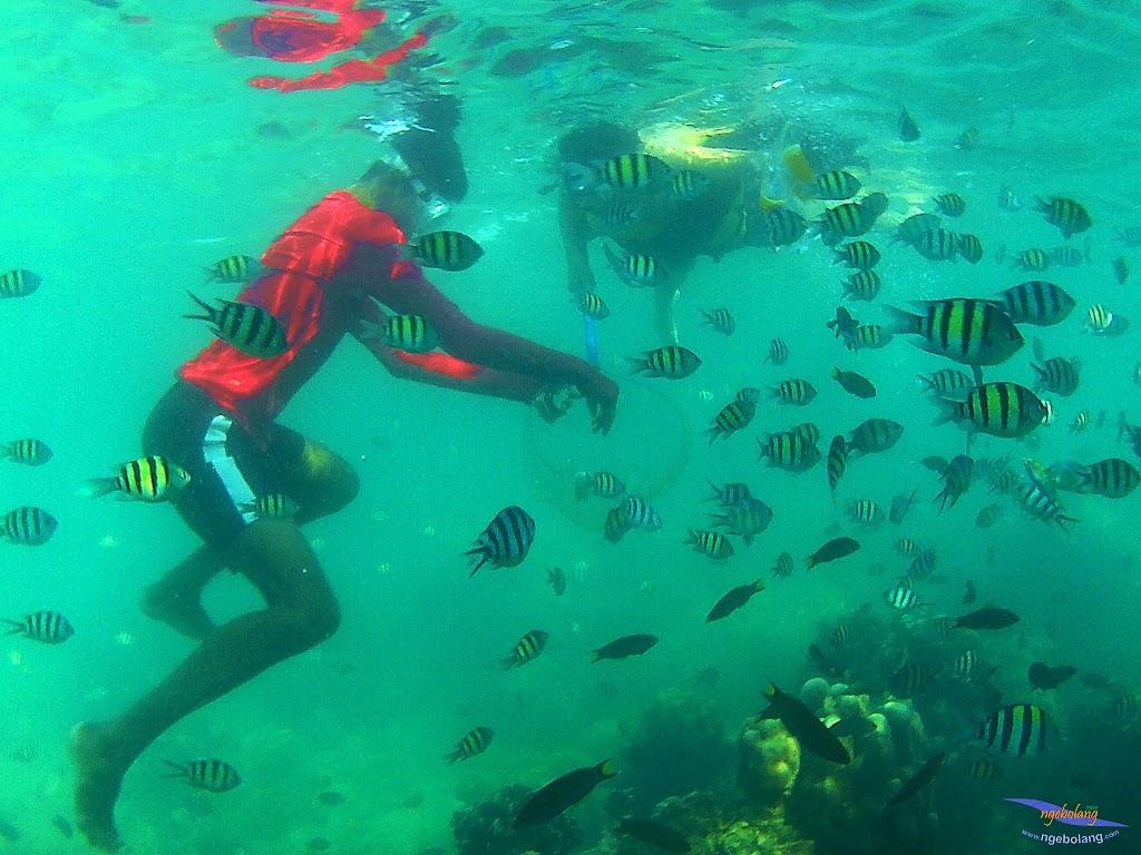 family trip pulau harapan, 1-2 agustus 2015 gopro 34