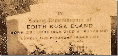 edith-rosa-enlarged